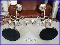 Superbe Paire De Chandeliers Ercuis Modele Cheverny Aux Cors En Metal Argente